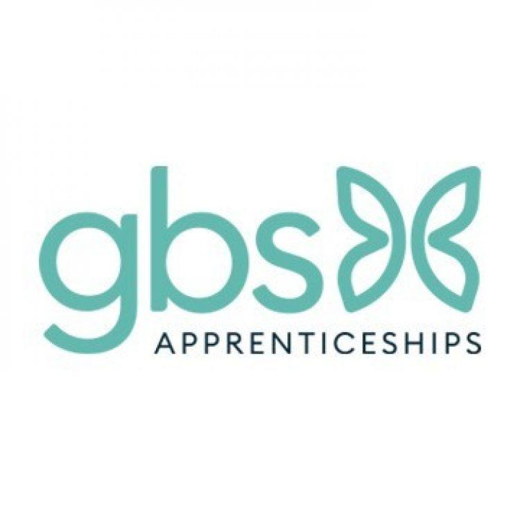 GBS Ltd Logo